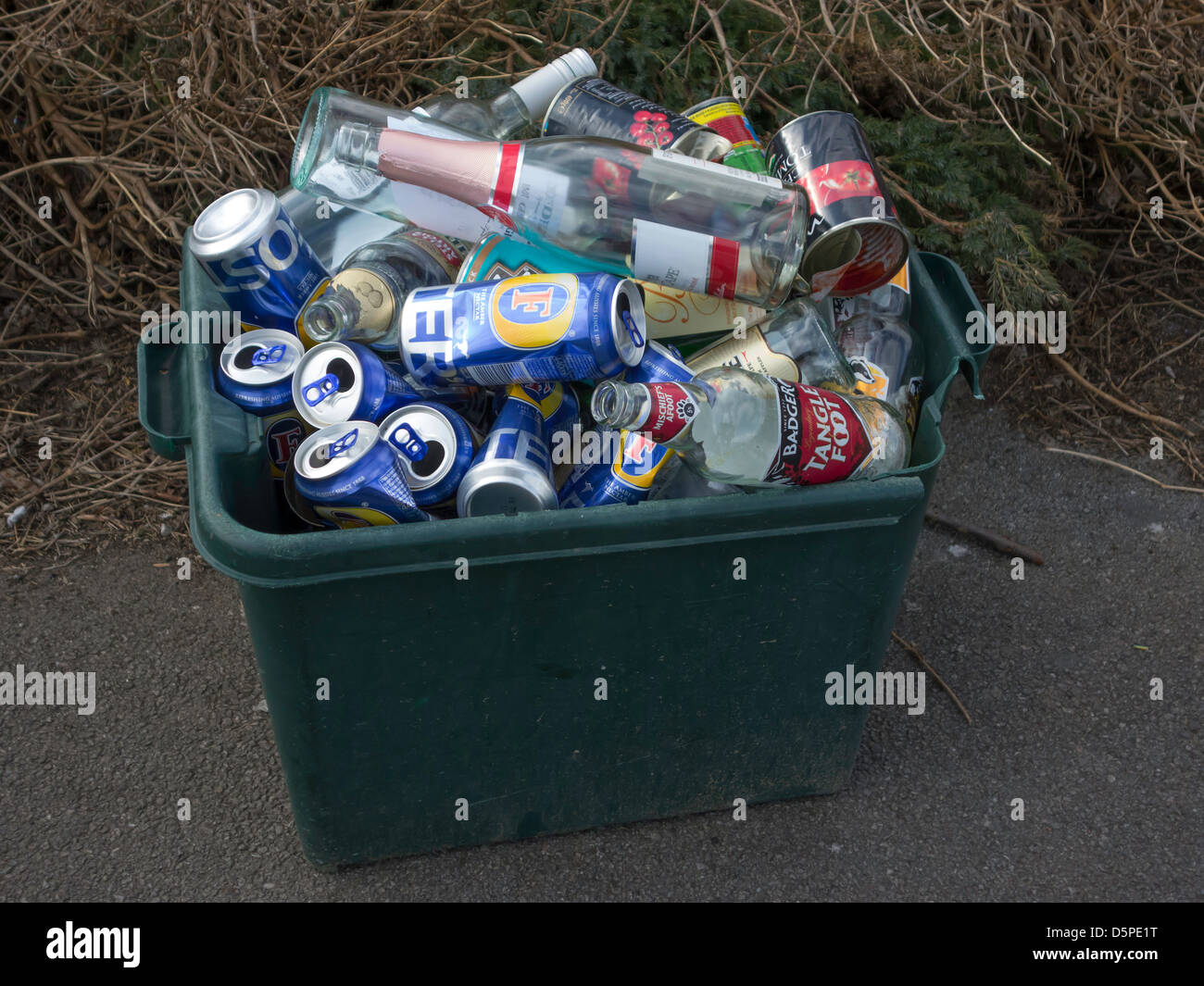Recycling Green box for bottles and tins filled with Lager cans - Stock Image