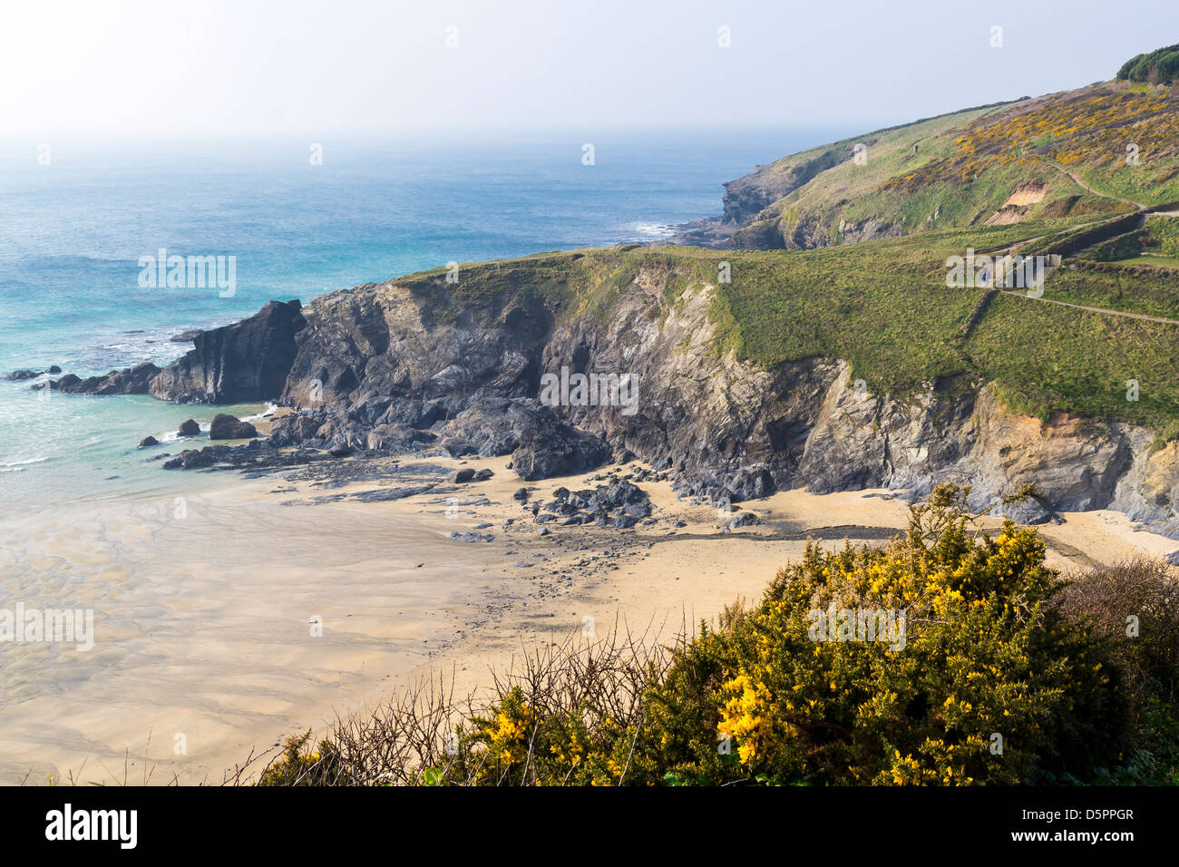 Overlooking the beach at Polurrian Cove Mullion Cornwall England UK - Stock Image