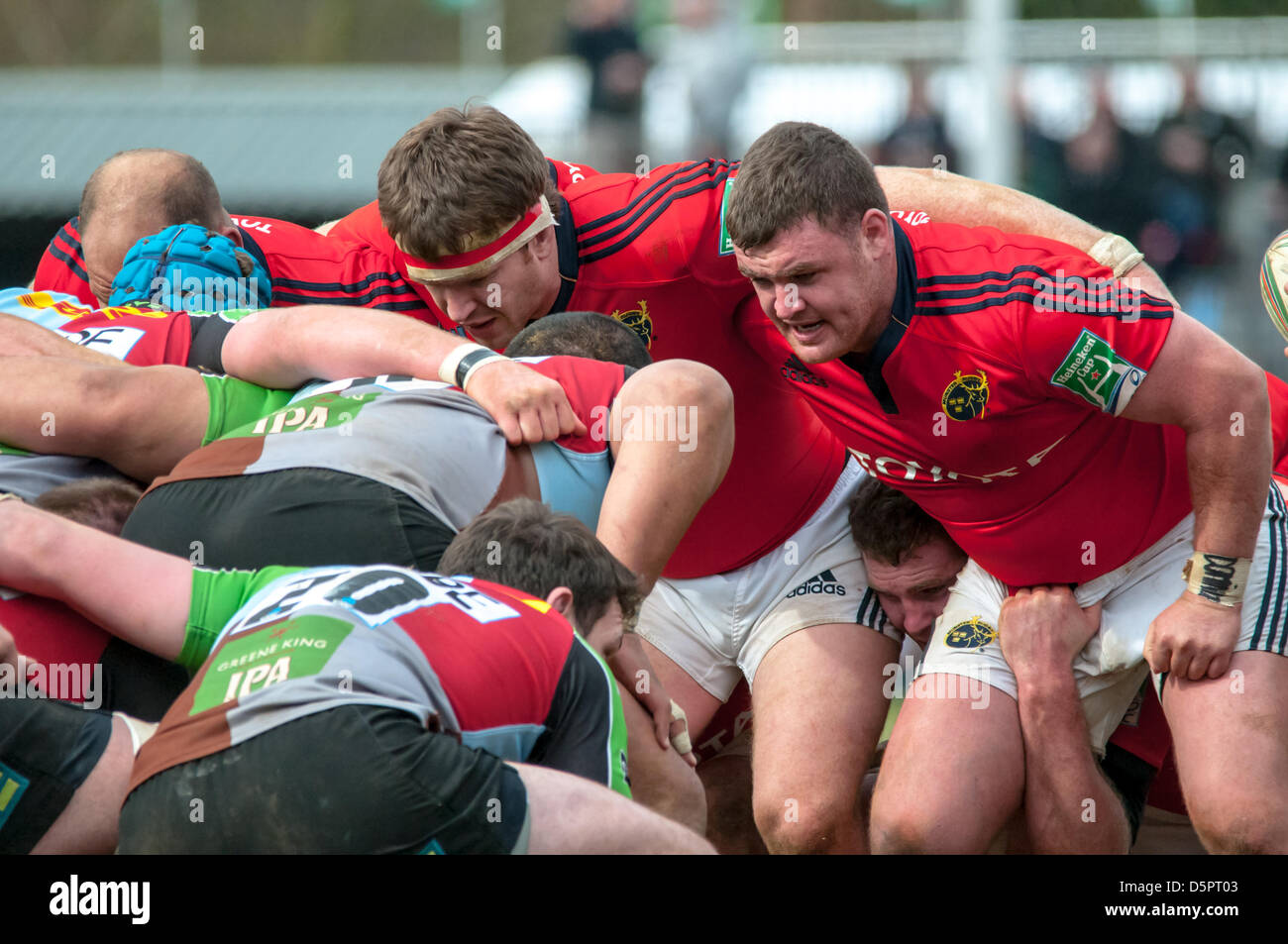 Preparing for the scrum down during the Heineken Cup quarter-final match between Harlequins and Munster at the Twickenham - Stock Image