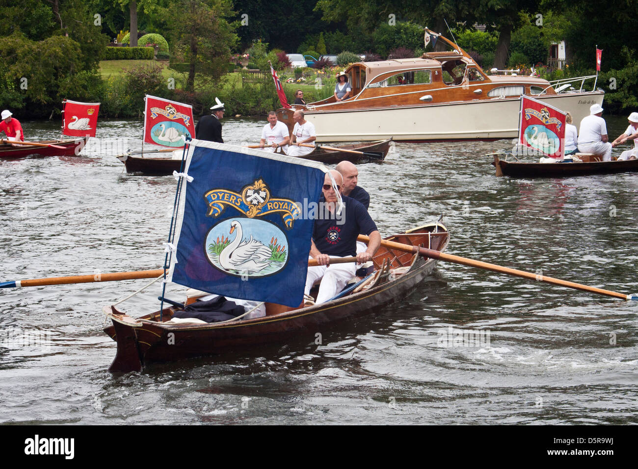 The Worshipful Company of Dyers row upstream on The River Thames during the annual swan upping ceremony. - Stock Image