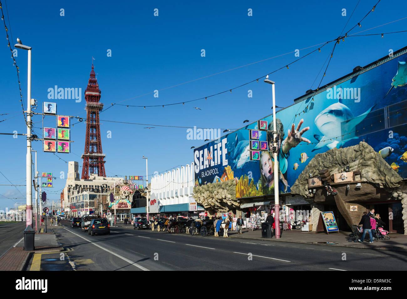Sealife Centre and Blackpool Tower, Blackpool seafront, Lancashire, England, UK - Stock Image