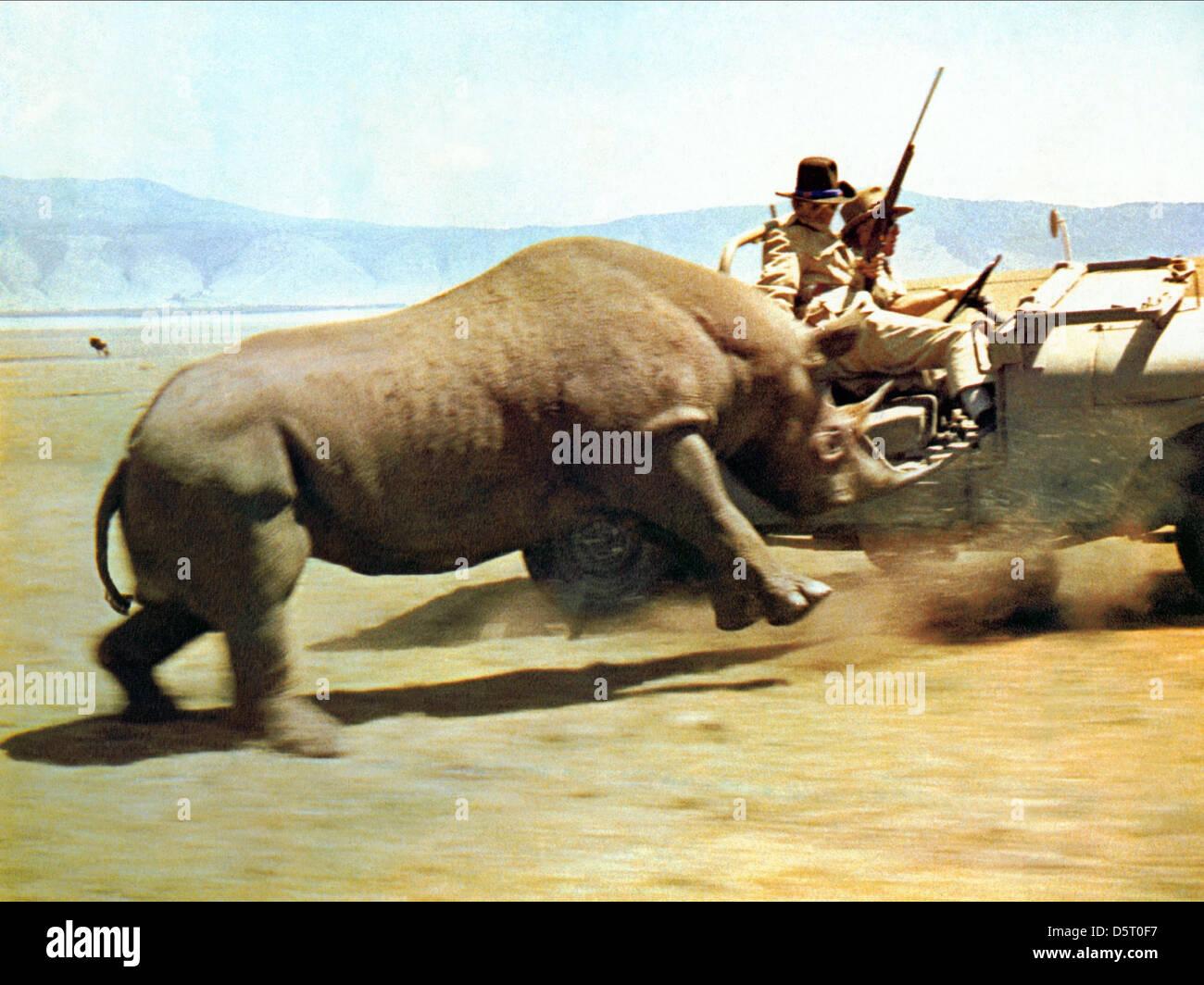 RHINO CHARGE HATARI! (1962) - Stock Image