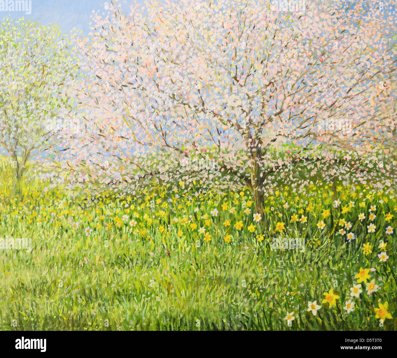 An oil painting on canvas of a springtime natural landscape with blooming trees and colorful meadow full of daffodils. - Stock Image