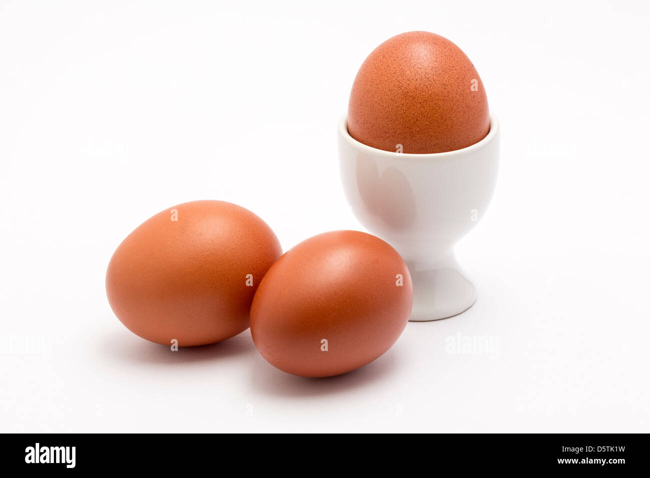 Three Burford Brown eggs one in a white egg cup on a plain background. - Stock Image