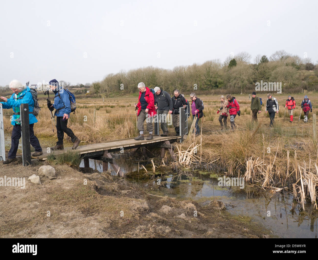 Isle of Anglesey North Wales Group fit and active walkers crossing a newly constructed bridge over ditch contructed - Stock Image