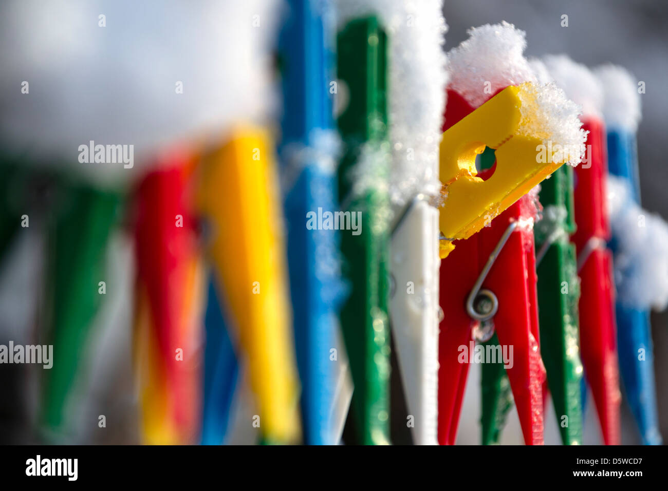 Washing line with a row of colorful pegs covered with snow queued in a row with one peg peeking out of the crowd - Stock Image