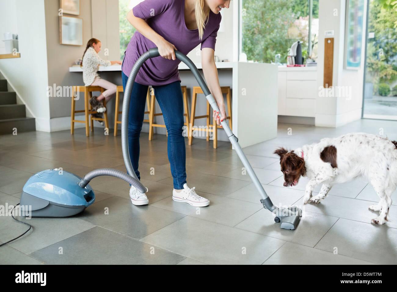 Woman vacuuming around sleeping dog - Stock Image