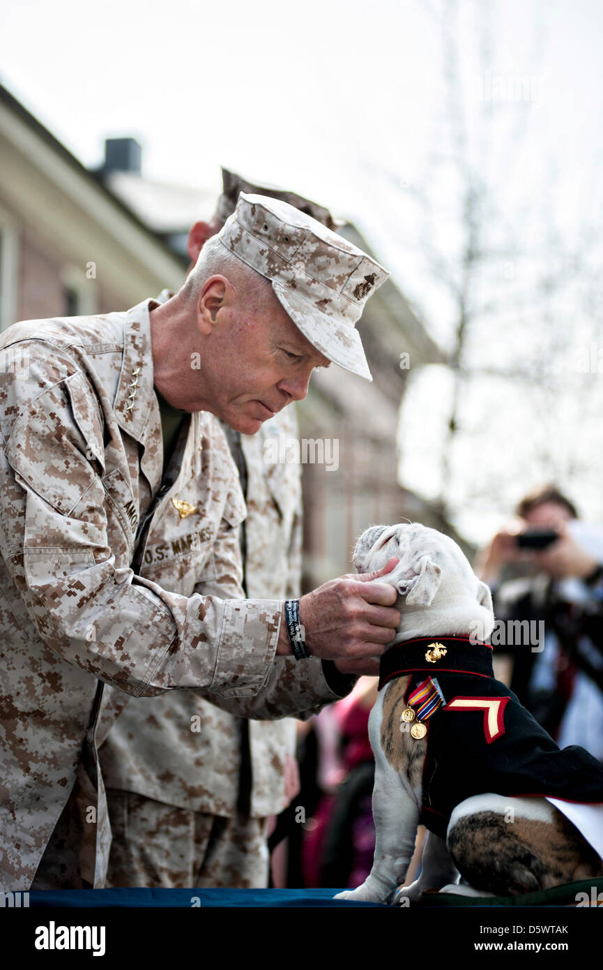 Commandant of the Marine Corps Gen. James F. Amos presents puppy Pfc. Chesty XIV, official mascot of the Marine Stock Photo