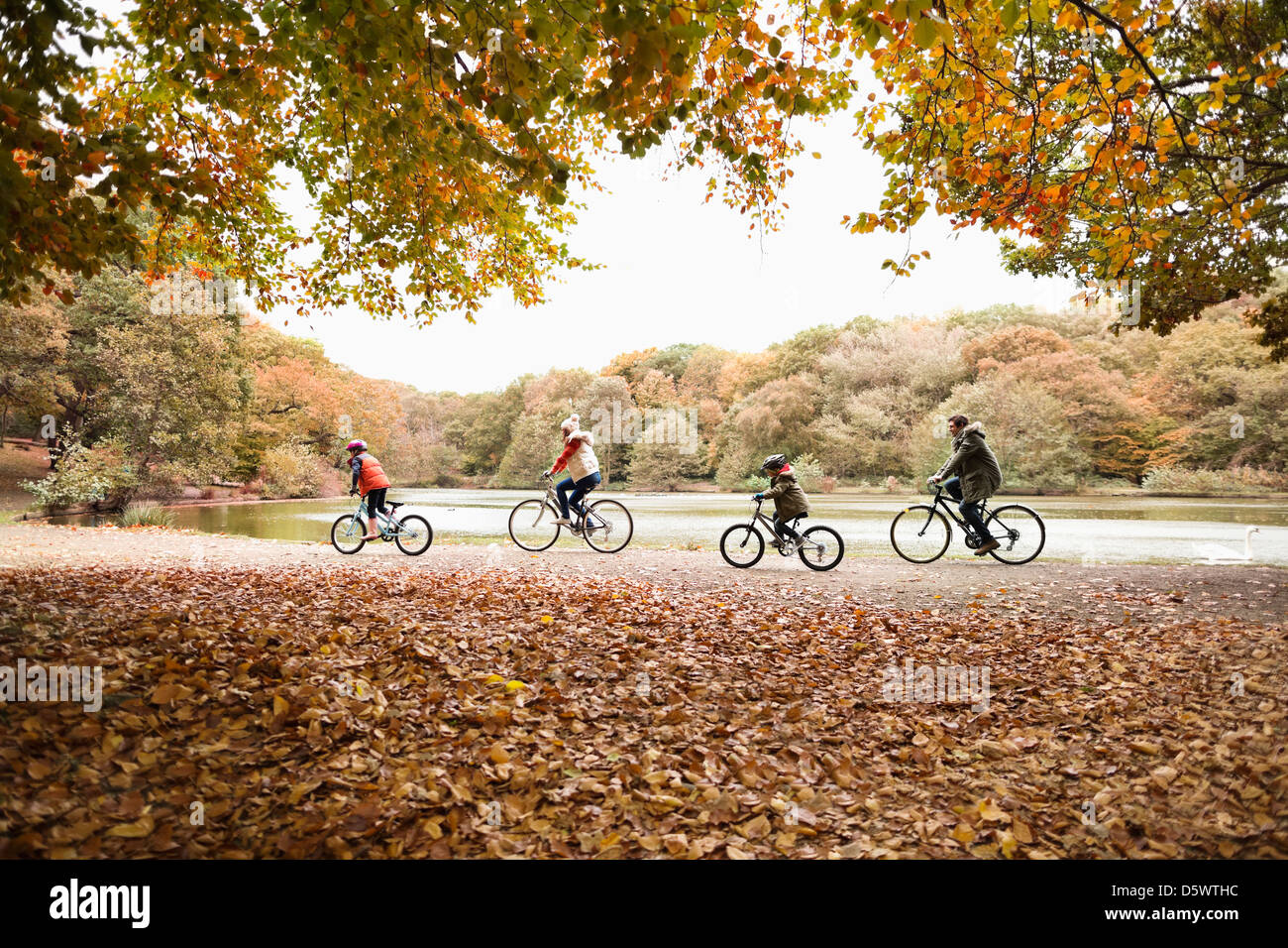 Family riding bicycles in park - Stock Image