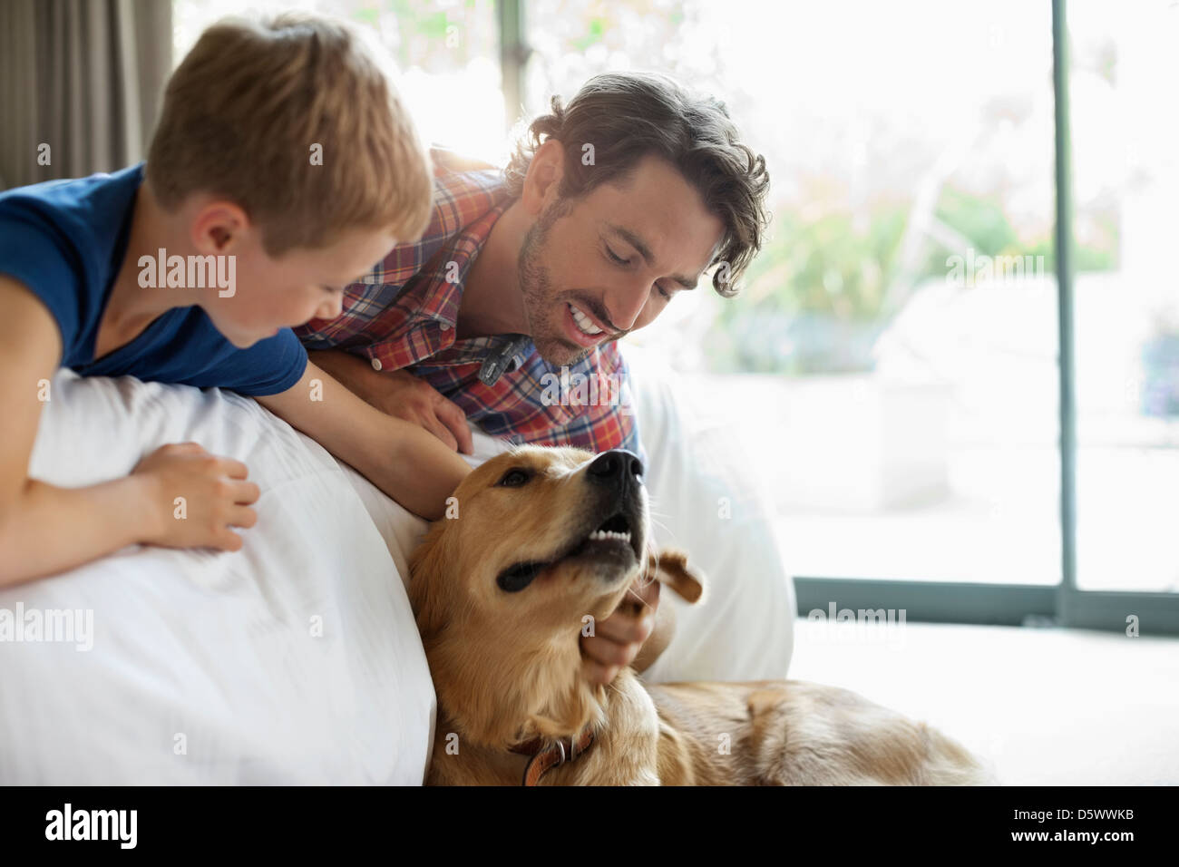 Father and son petting dog on sofa - Stock Image