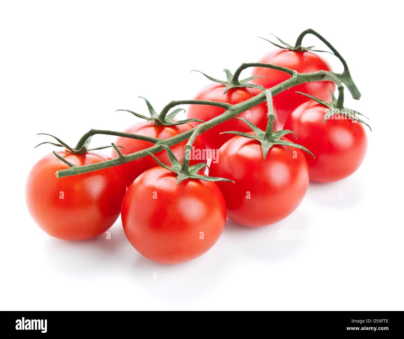 twig of fresh cherry tomato isolated on white background - Stock Image