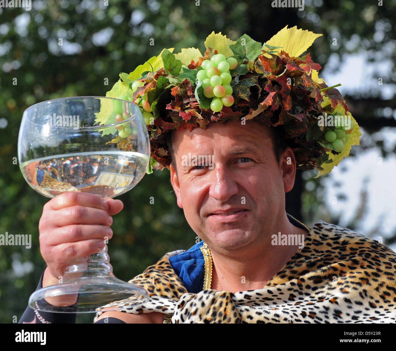 Joerg Riedrich as bacchus leads the 2nd parade of Saxon Winemakers in Radebeul, Germany, 07 October 2012. 400 people Stock Photo