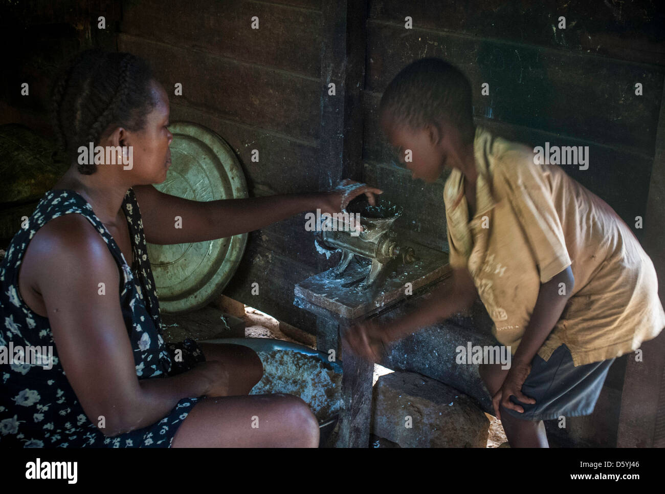 making cassava sticks in Cameroon - Stock Image