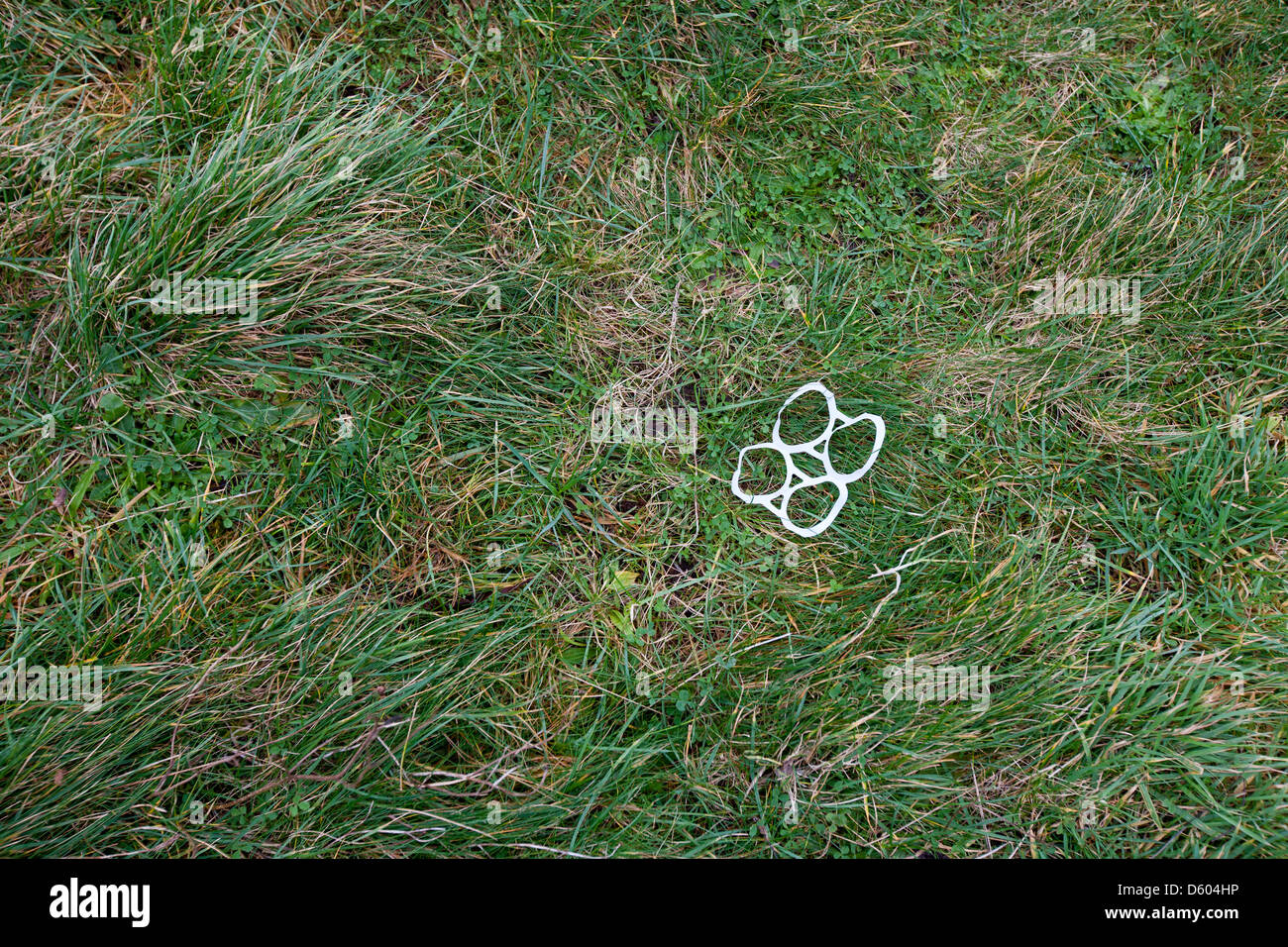 Plastic can rings littered grass - Stock Image