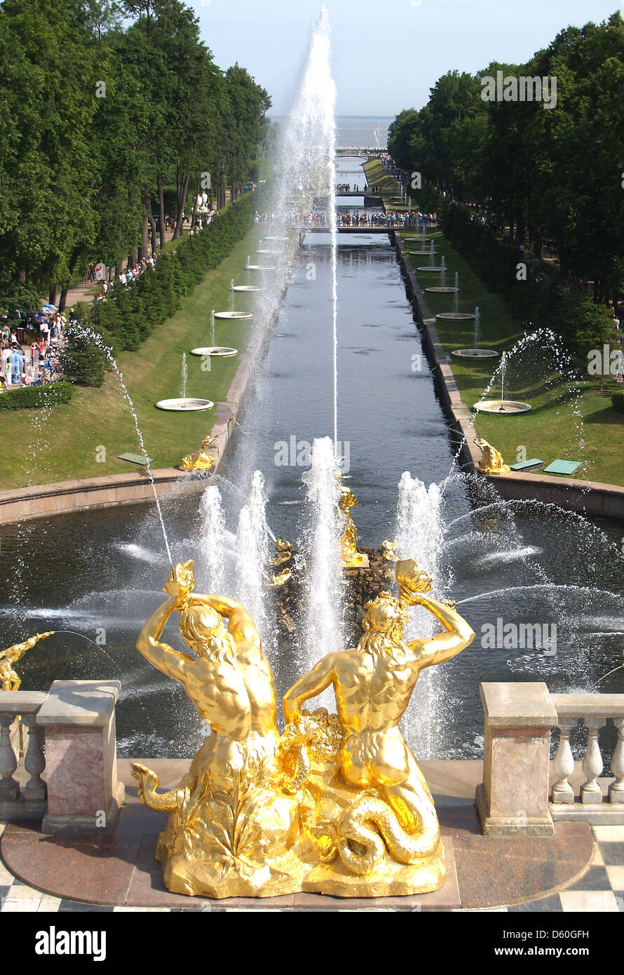 The Samson Fountain and Water Avenue at Peterhof Palace,St.Petersburg - Stock Image