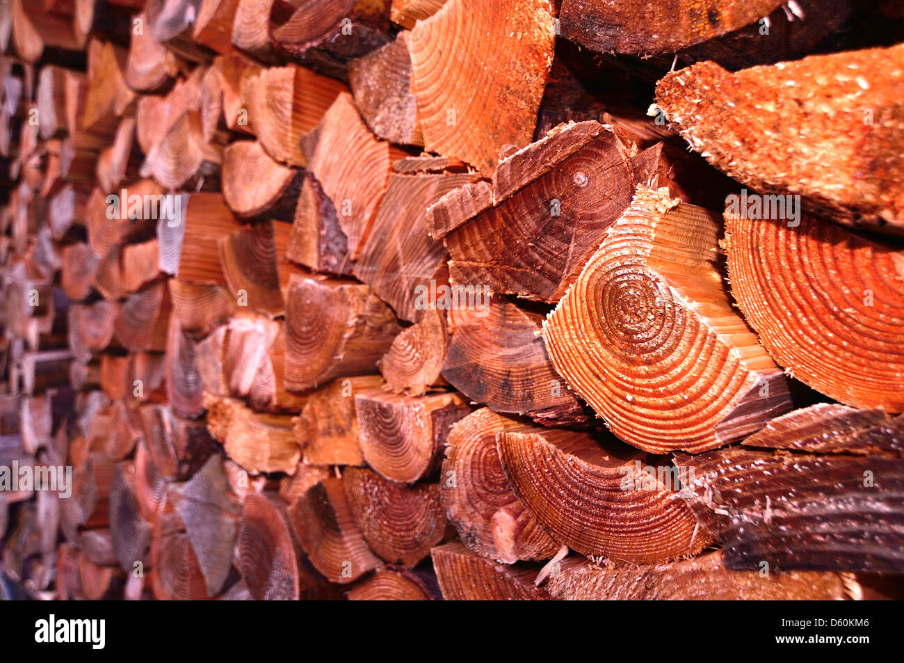 Close up with selective focus of a pile of chopped firewood or logs - Stock Image
