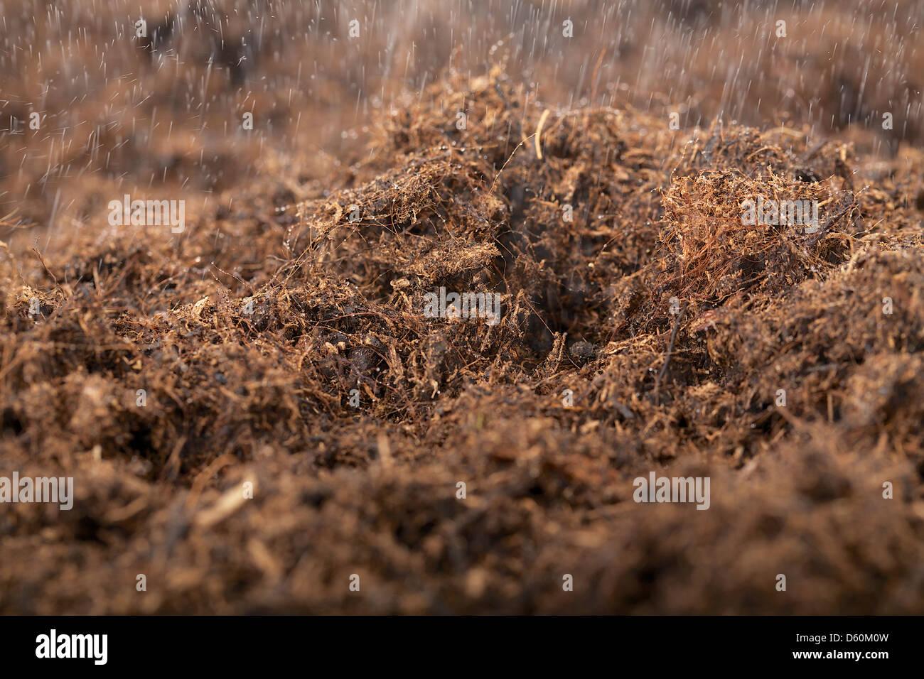Garden Soil Rain Stock Photos Amp Garden Soil Rain Stock