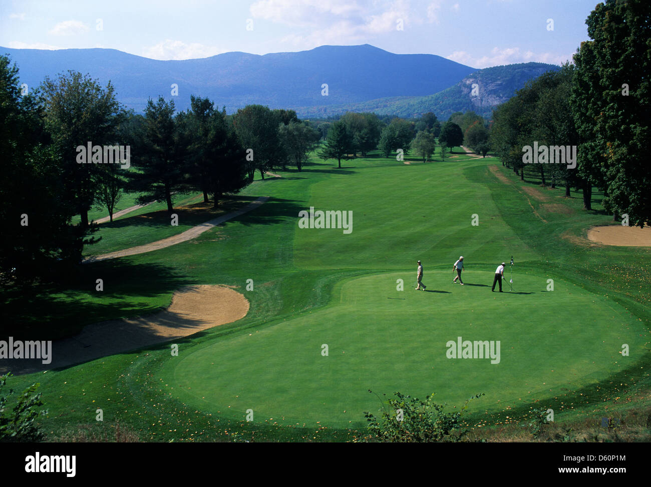 Elk281-1470 New Hampshire, North Conway, golf green - Stock Image