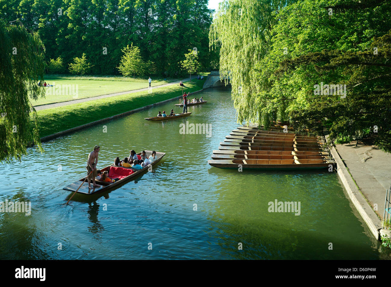 Cambridge punting, Cambridge, England,May 2010. Punting on the famous 'Backs' in the University City of - Stock Image