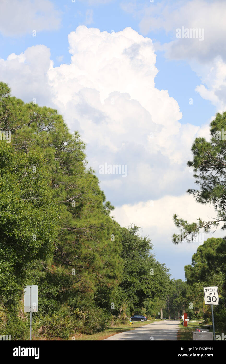 cumulus clouds developing into cumulonimbus clouds over a suburban city street with trees and a road - Stock Image