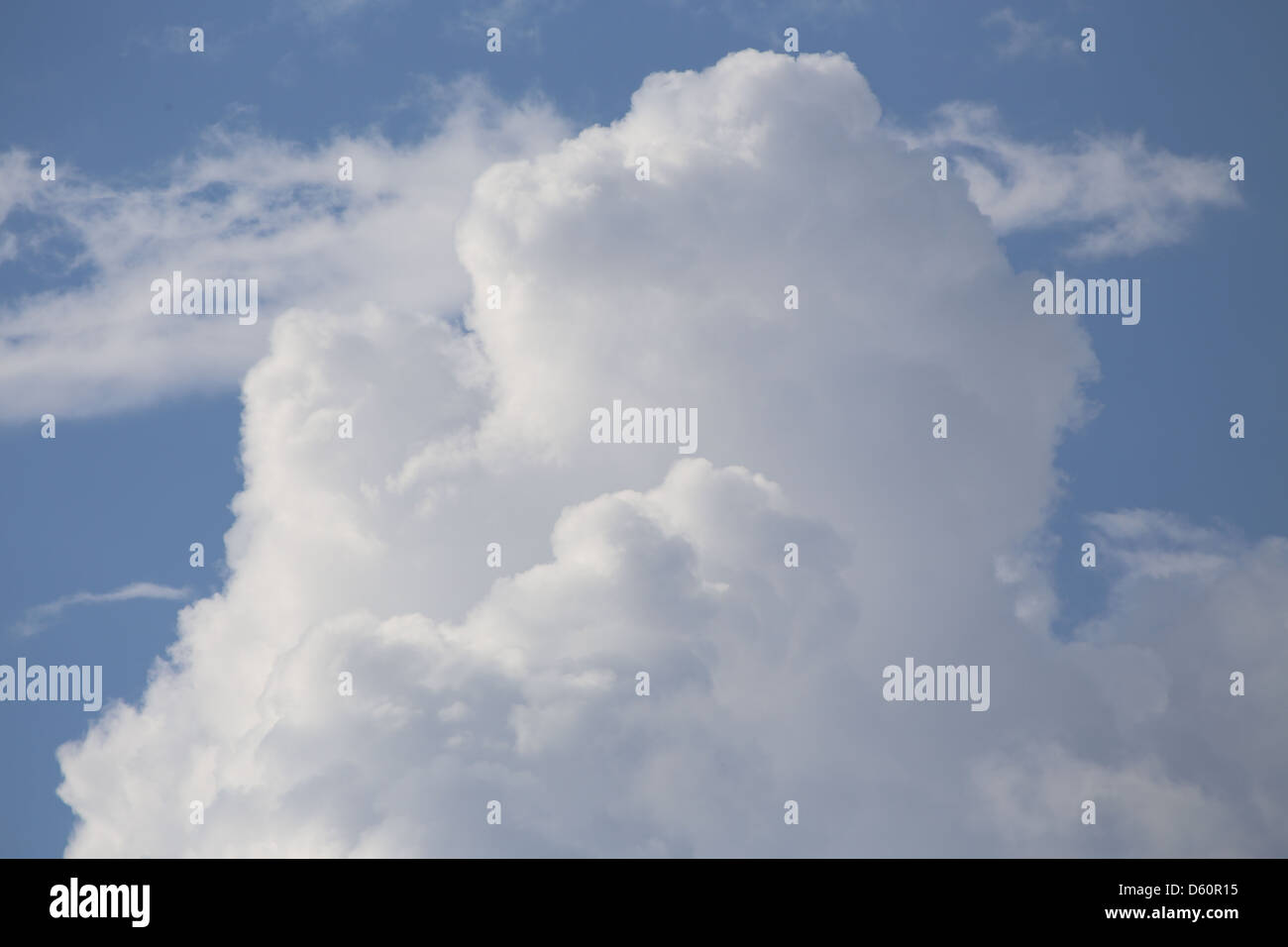 A cumulus cloud that is building to become a thunder head or cumulonimbus cloud - Stock Image