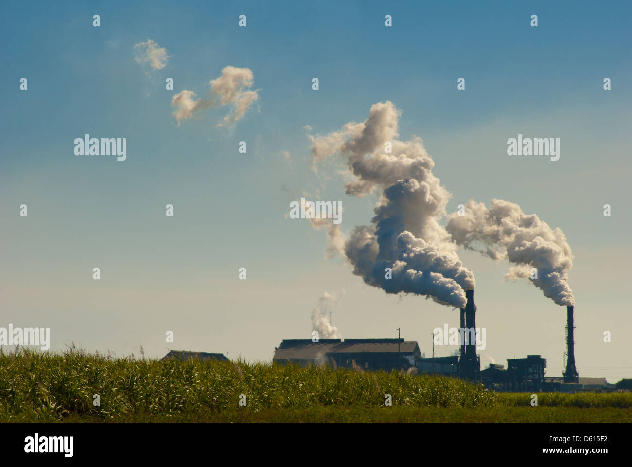 Sugar cane mill in Bell Glade, Florida, USA - Stock Image