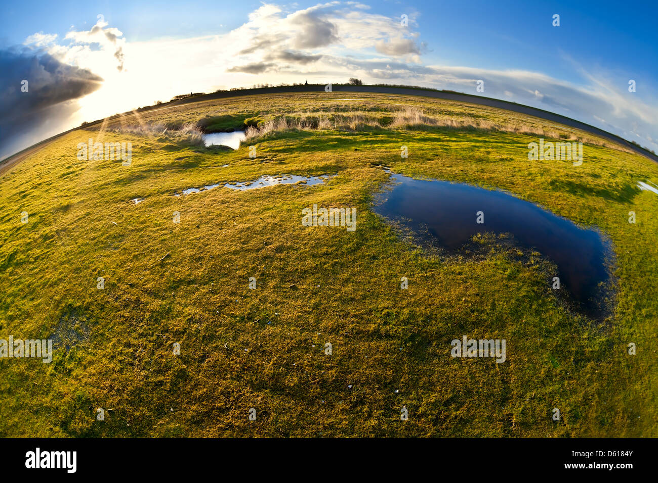 pond, pasture and sun via fisheye view - Stock Image