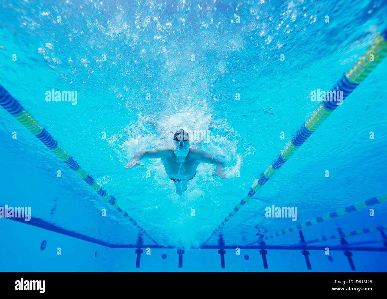 Underwater shot of male swimmer swimming in pool Stock Photo