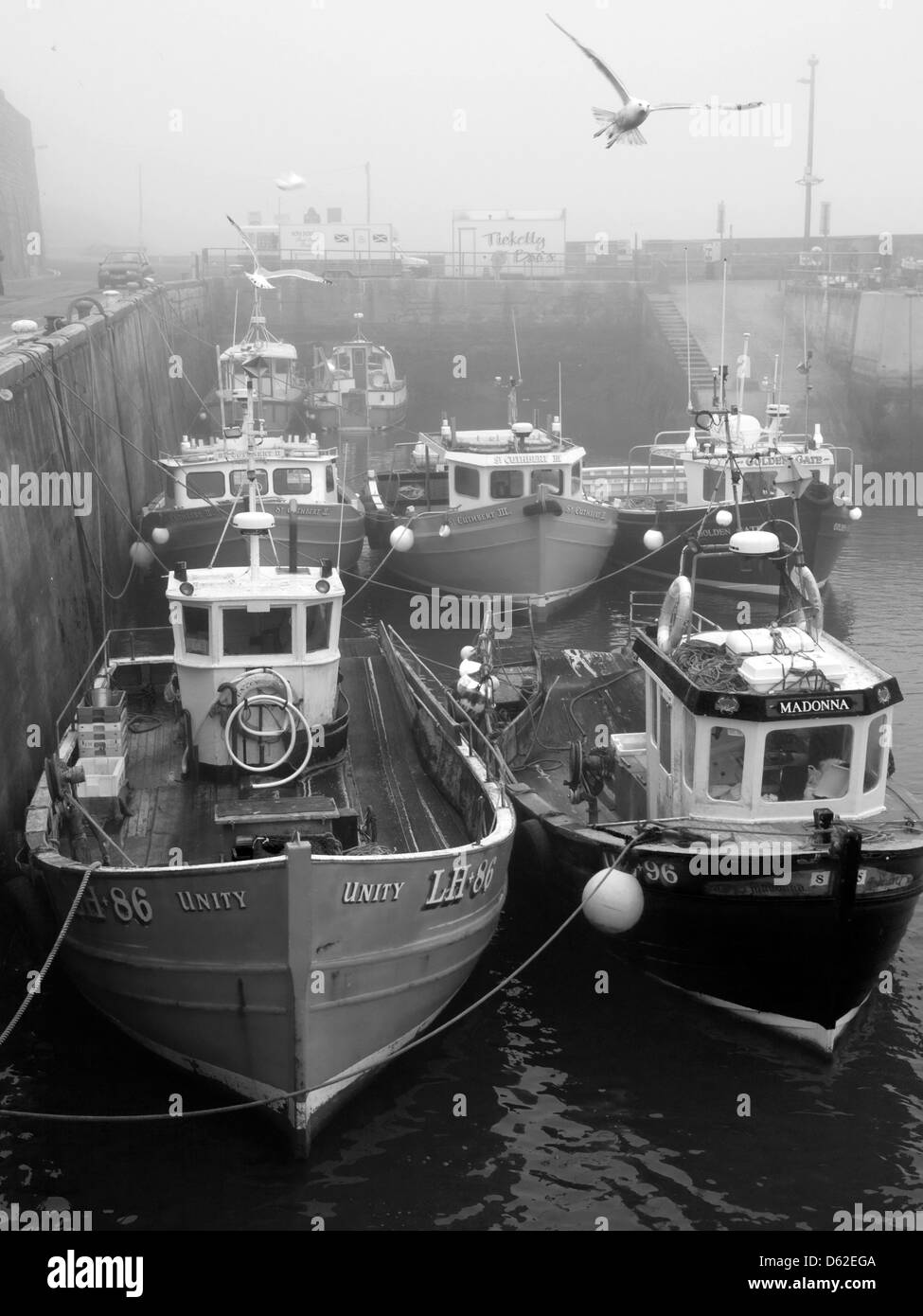 Fishing boats in the harbour on a grey misty day in Seahouses, Northumberland England UK - Stock Image