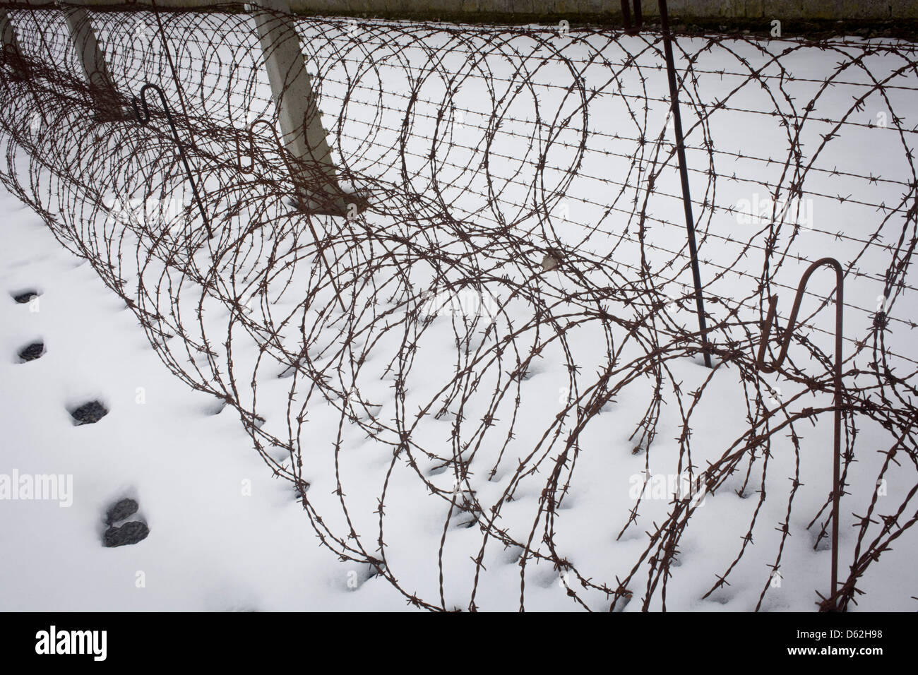 Coils of rusting barbed wire in winter snow form a perimeter fence ...