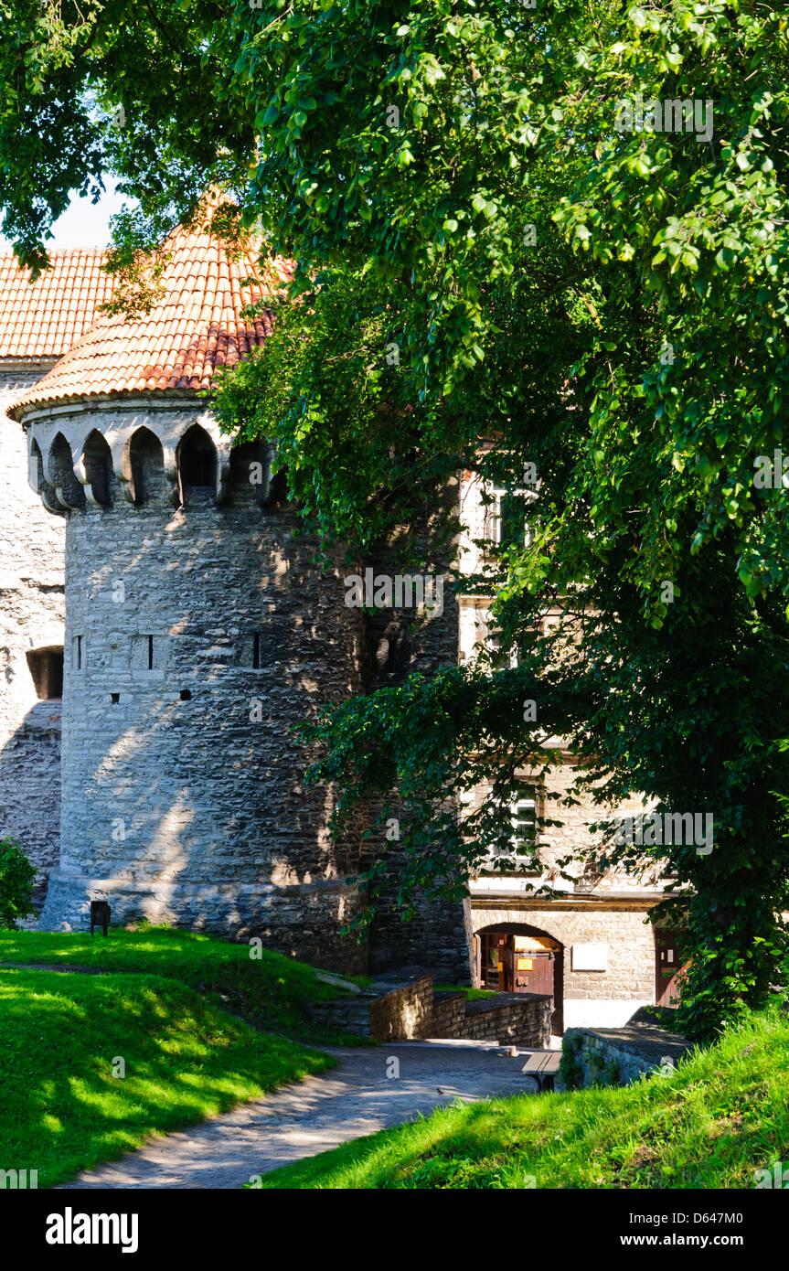 medieval defense towet in tallinn, estonia Stock Photo