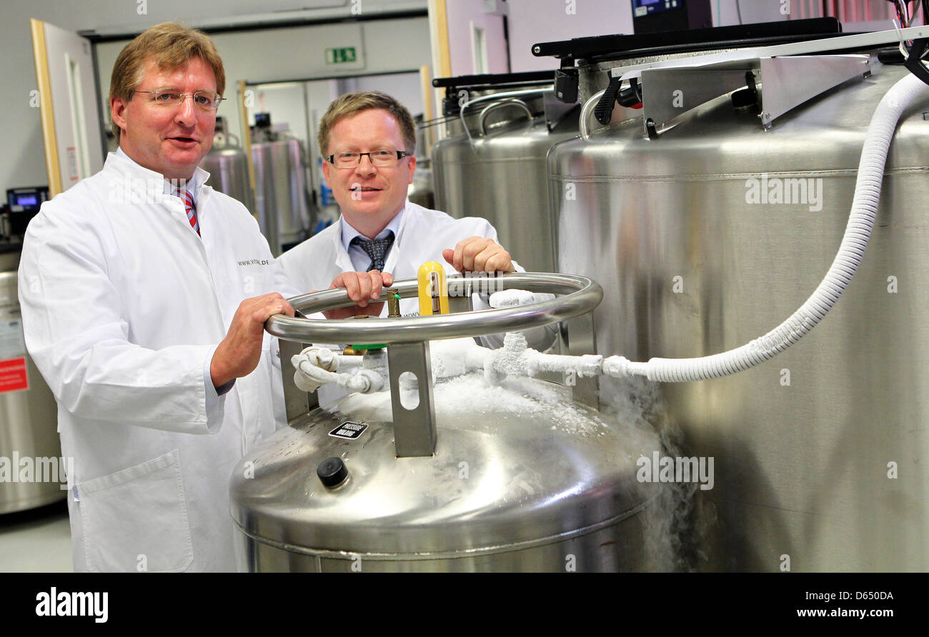 The two managing directors of Umbilical Cord Blood Bank VITA 34 AG André Gerth (L) and Joerg Ulbrich pose in - Stock Image