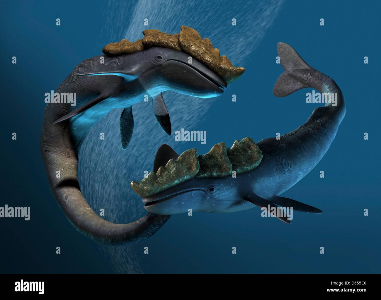 Leviathan sea monsters, artwork - Stock Image