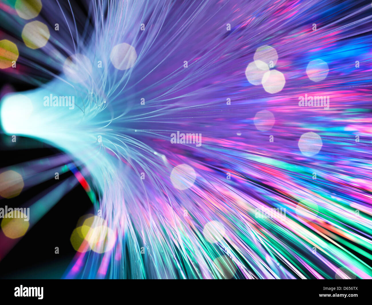 Optical fibres - Stock Image