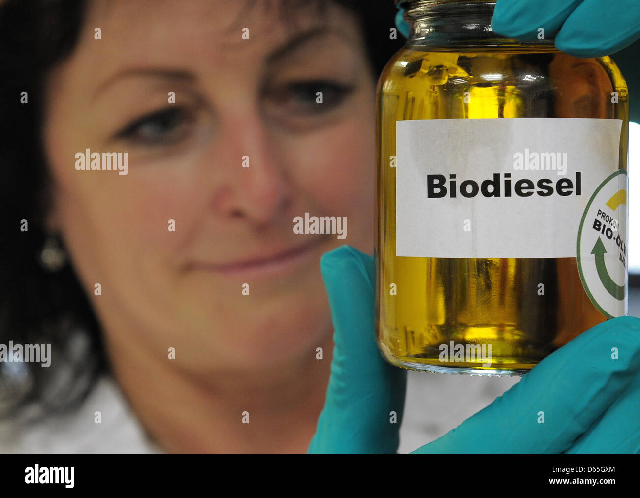 A laboratory worker examines a sample of biodiesel at the BIO-Oelwerk (Bio Oil Factory) in Magdeburg,Germany, - Stock Image