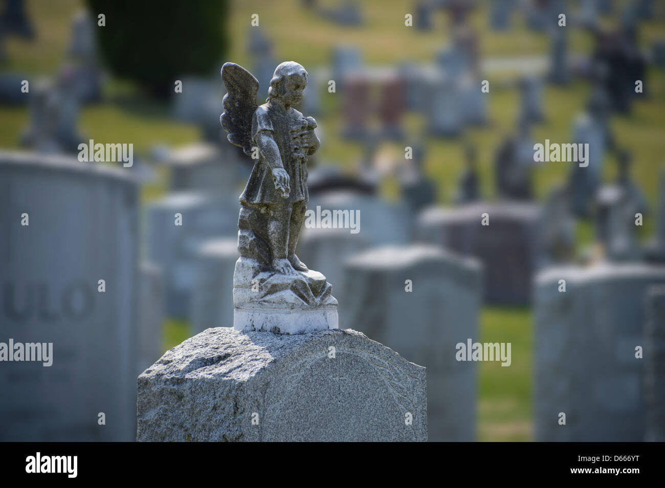 Angel On Cemetery Tombstone - Stock Image