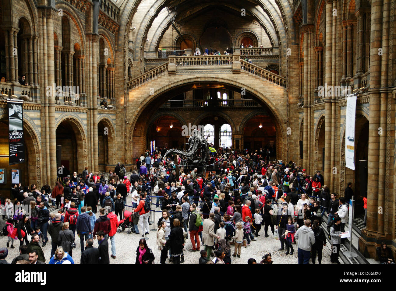 Visitors crowd into the central hall of the Natural History museum, London, UK. - Stock Image