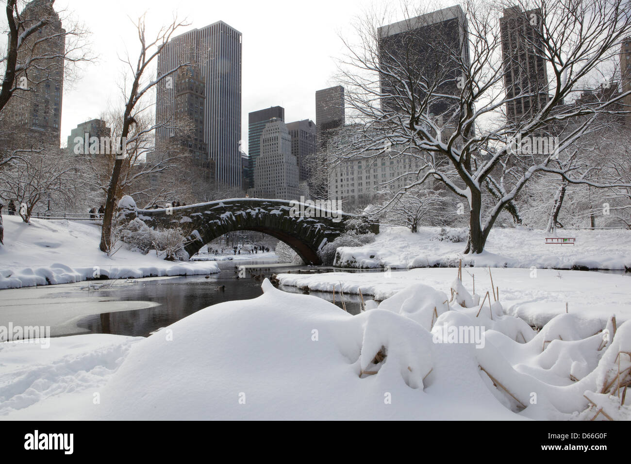 snow in Central park New York - Stock Image