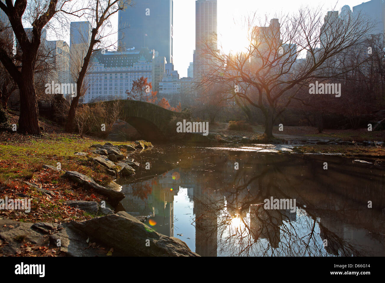 fall in central park with New York skyline - Stock Image