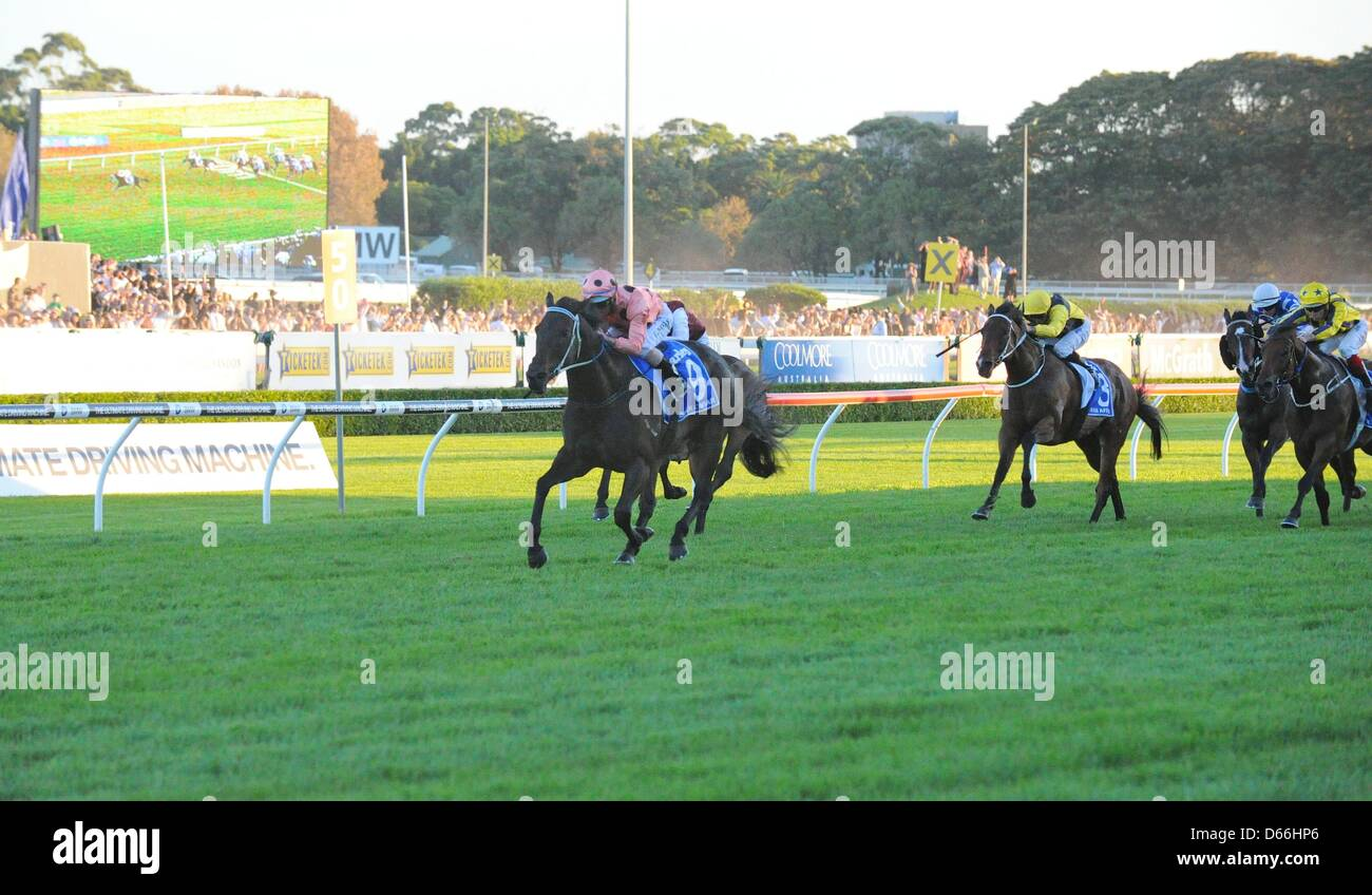 Sydney, New South Wales, Australia April 13, 2013. Black Caviar (no. 9), ridden by Luke Nolen and trained by Peter - Stock Image