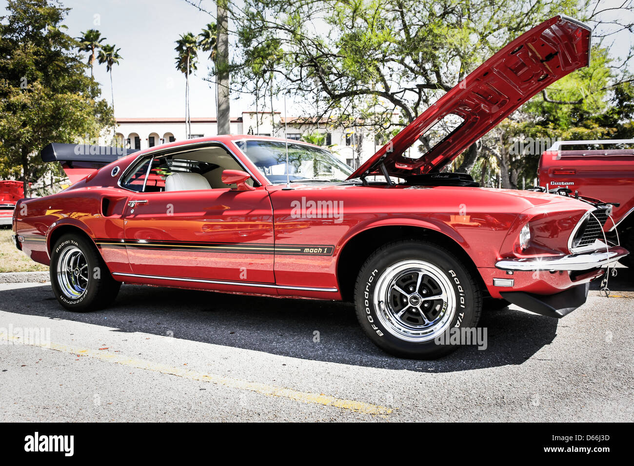 Cobra Jet Mustang >> 1969 Ford Mustang Mach 1 with a Cobra Jet engine Stock Photo: 55464961 - Alamy