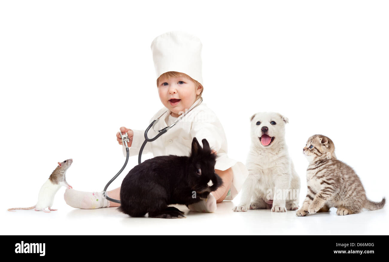Cute small kid doctor examining pets dog, cat, bunny and rat - Stock Image