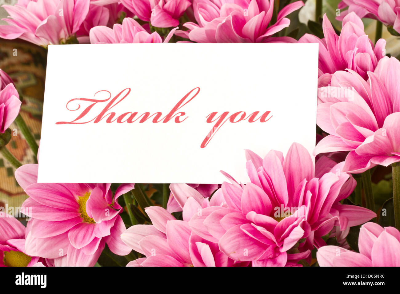 Thank Flowers Beautiful Handwriting Greeting Stock Photos Thank