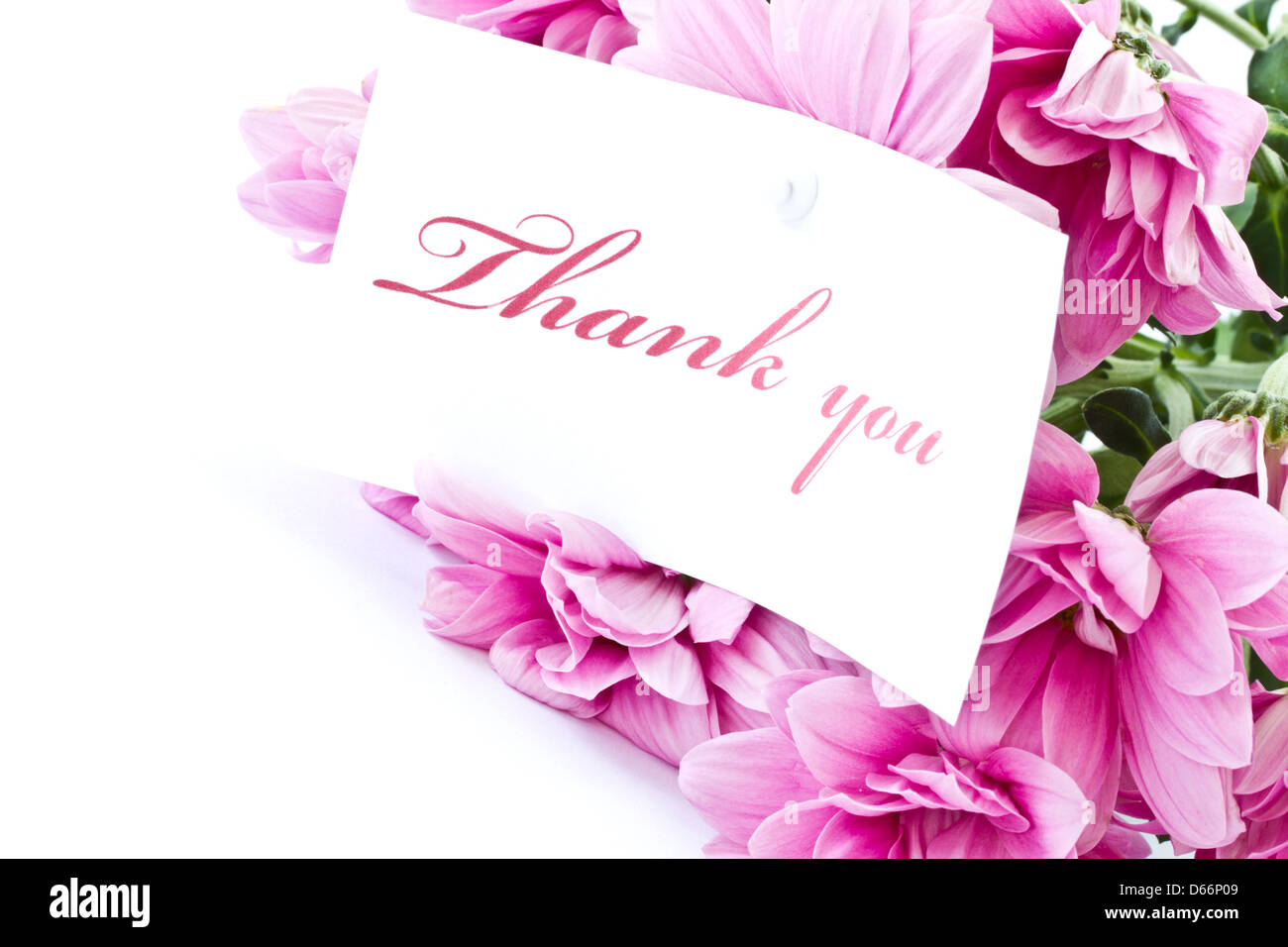 Thank You Note Flowers Nobody Stock Photos Thank You Note Flowers