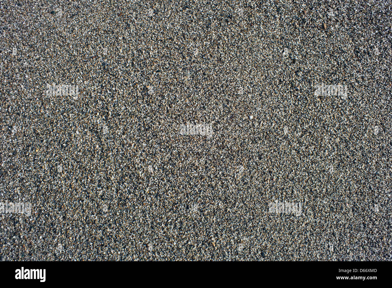 damp and grainy sand background - Stock Image