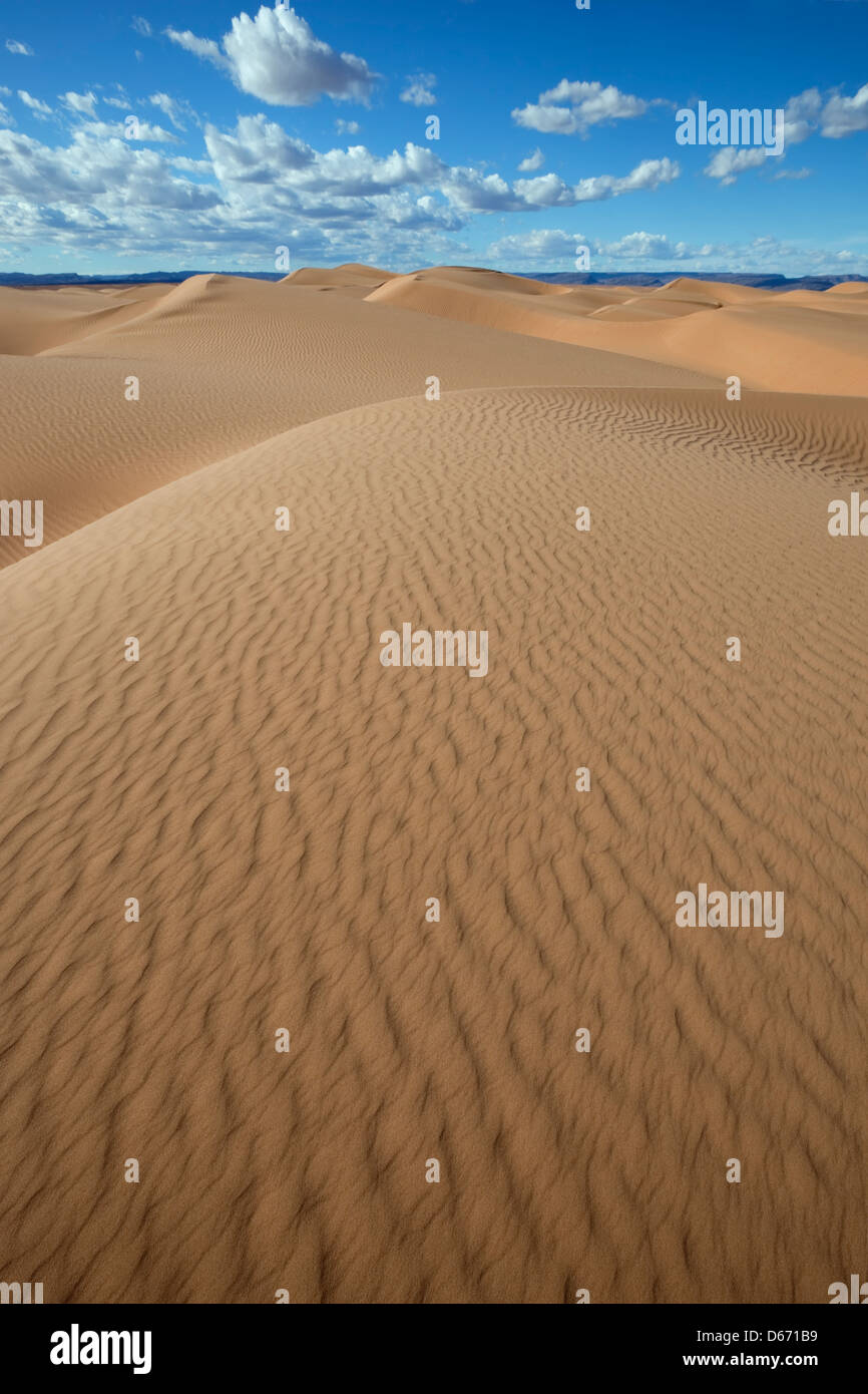 Sahara desert sand dunes with cloudy blue sky. Stock Photo