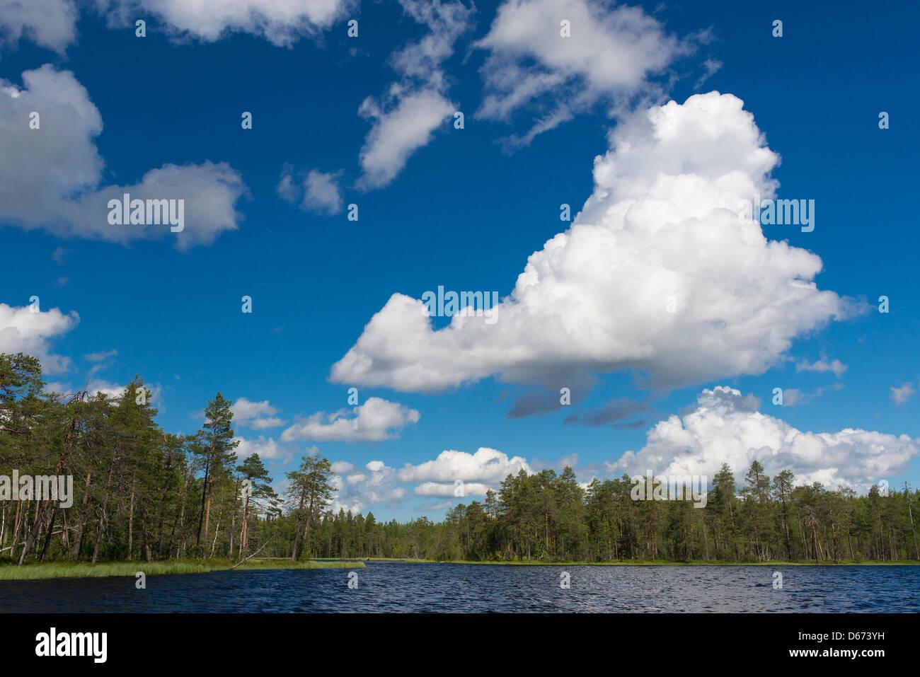 finnish landscape, finland - Stock Image