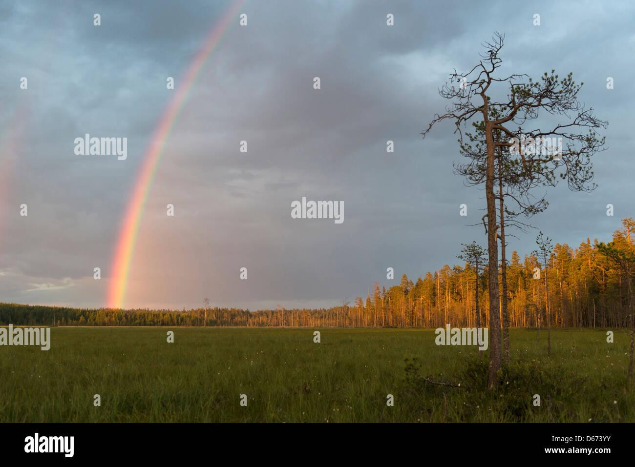 rainbow over finnish landscape, finland - Stock Image