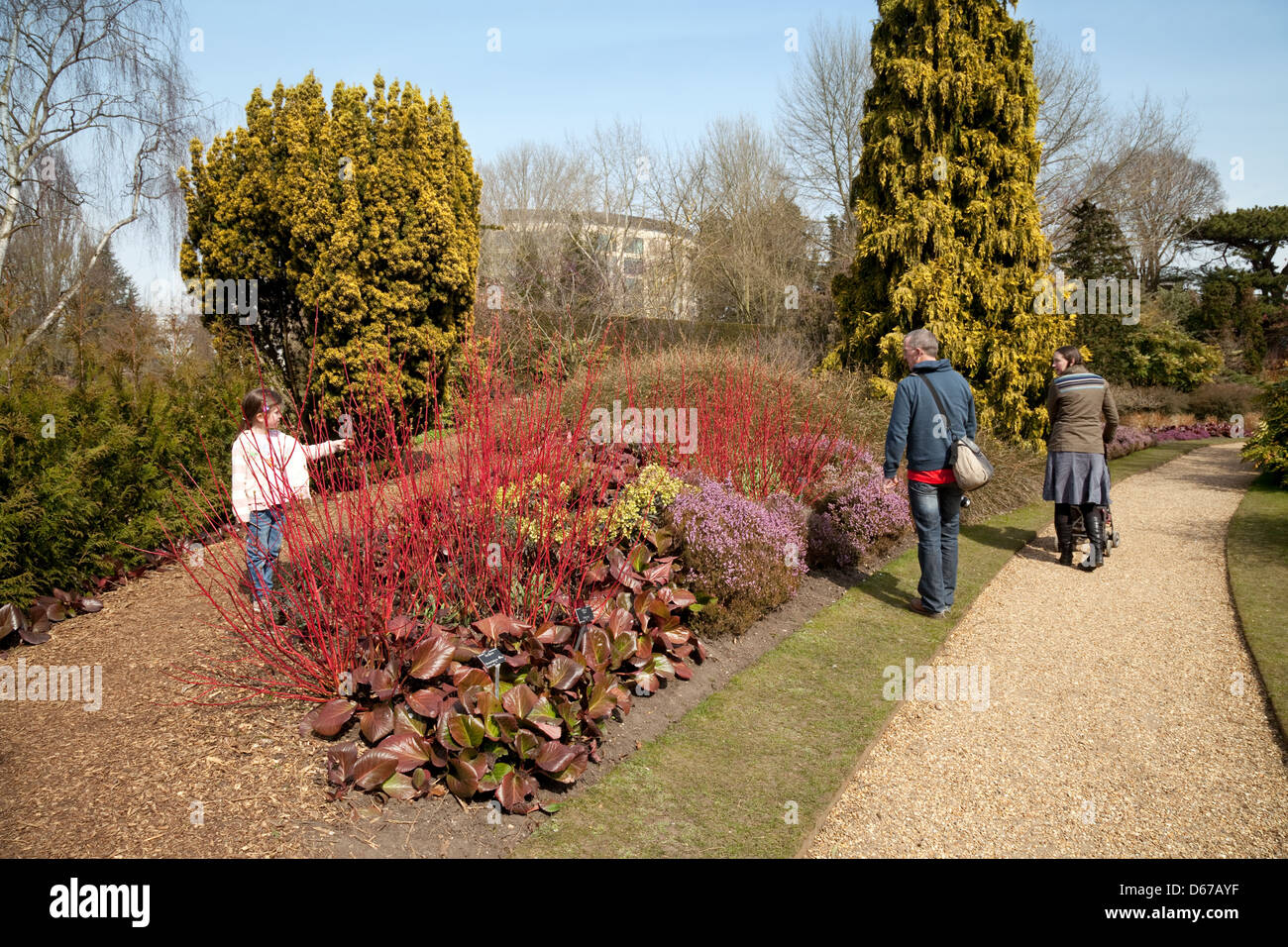A family looking at flowers and plants in the Winter Garden Stock ...