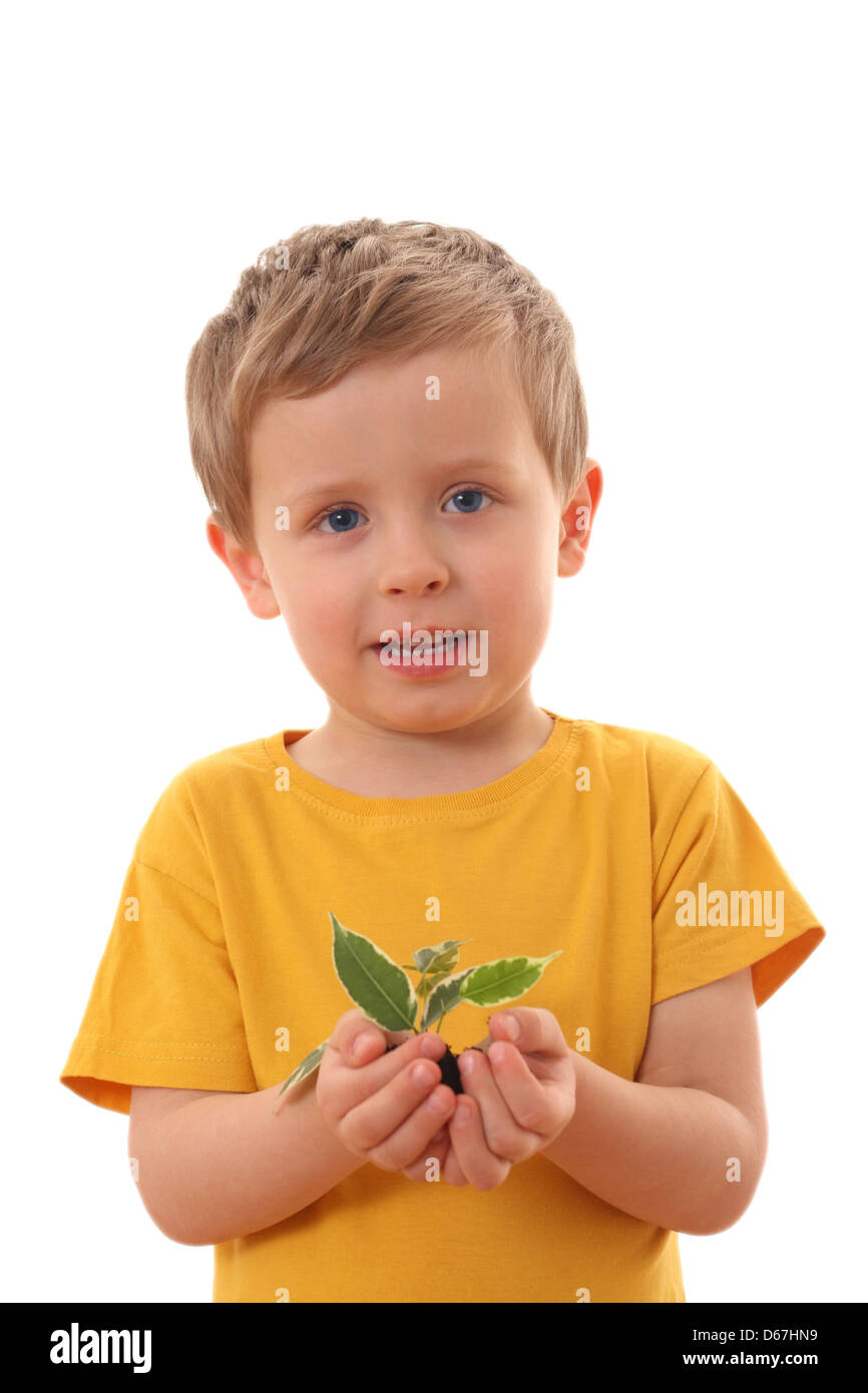 boy,growth,seedling Stock Photo
